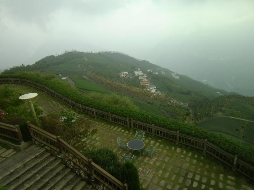 碧湖山茶園景觀台